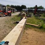 Achat poutres chêne grandes longueurs environ 9m, rabotage et ponçage