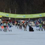 Start des König Ludwig Lauf 38 Km Klassisch