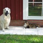 Herman und Akala, die oft zusammen anzutreffen waren