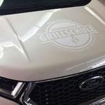 Sehr dezente Fahrzeugbeschriftung mit Firmenlogo, 1 Farbnuance heller als Fahrzeuglackierung