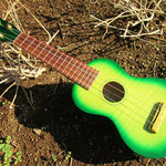 Zephyr No.22 Green 三つ葉楽器 http://www.mituba-kk.com/