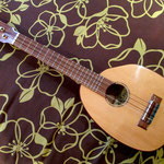 Ka Lani The Strings   http://kalanithestrings.jimdo.com/