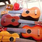 三つ葉楽器のウクレレたち