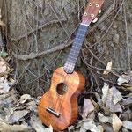 ASTURIAS Soprano Koa 12  http://www.asturias.jp/ukulele/