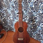 Gibson T-1 Tenor  http://www2.gibson.com/Gibson.aspx