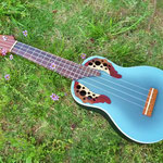 Applause UA20-A8  http://www.ovationguitars.com/applause