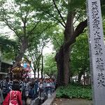 けやき並木と六之宮神輿