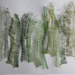 Porot/Forêt Dunan
