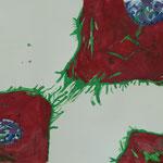 """Unter dem Mikroskop"", Gouache auf Papier, 5Cn, 2015/16"