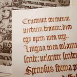 Para aprender, nada mejor que ir a los orígenes. Aquí una copia de un pequeño fragmento del Libro de Horas del Duque de Berry.