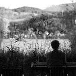 """Foto©c.redtenbacher, """"Die Partnergarnelen 6/14"""" / Zeichnung auf Glas / Ort: Terrassenfenster"""