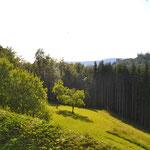 Ausblick von der Terrasse