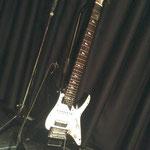 20140326使用ギター