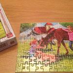 € 3,00 puzzel met paarden 100 stukjes