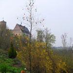 Österliche Burg Scharfenstein