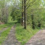 Links führt die Poststraße zur B95, rechts geht's zum Tisch'l