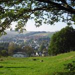 Blick auf Burkhardtsdorf vom Zöpfelsteig