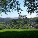 Kemtau mit Dittersdorfer Höhe im Hintergrund