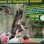 Vogelpark Steinen
