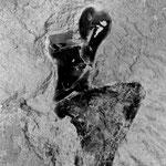 silex incrusté dans la pierre, 29 août 2008, 18h