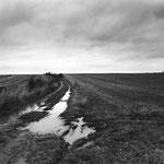 Vexin, le plateau d'Auvers-sur-Oise (47)