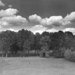 Abbaye de maubuisson, le parc (diptyque) (2)