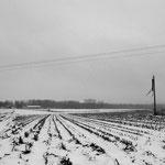 La plaine de Pierrelaye, hiver 2013