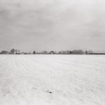Le cimetière et le champ de blé aux corbeaux