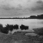 Brenne, les étangs (3)
