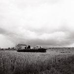 Vexin, le cimetière de Magny, août 2013