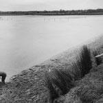 Brenne, les étangs (8)
