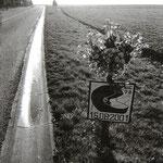 Route de Beauvais (Oise)