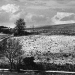 Paysage du Gers, série 2 (6)