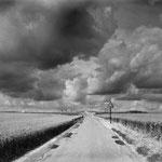 Vexin, le plateau d'Auvers-sur-Oise (7)