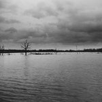 Brenne, les étangs (4)