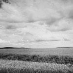 Vexin, le plateau d'Auvers-sur-Oise (73)