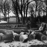 Maubuisson, le parc après la tempête, janvier 2000 (1)