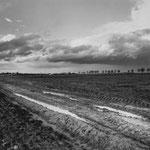 Vexin, le plateau d'Auvers-sur-Oise (52)