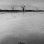 Brenne, les étangs (2)