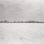 Vexin, plateau d'Auvers-sur-Oise  (5)