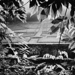 Gers, la fenêtre sur le parc en création