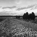 Vexin, environs de Villiers-Adam (2)