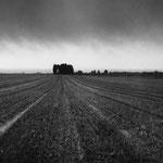 Vexin, plateau d'Auvers-sur-Oise
