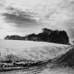 Vexin, le plateau d'Auvers-sur-Oise (68)