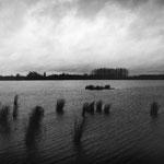 Brenne, les étangs (6)