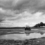 Vexin, le plateau d'Auvers-sur-Oise (49)