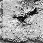 silex incrusté dans la pierre, 25 août 2008, 14h