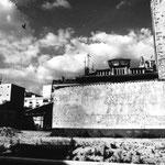 La friche du Hainaut (4)