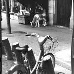 Vélib Paris (Entreprise Charier) (4)