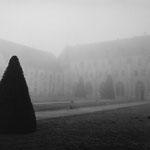 Abbaye de Royaumont dans la brume